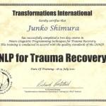 NLP of Trauma Recovery